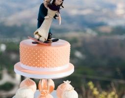 Natasha's and Andrew's Wedding - August 2015